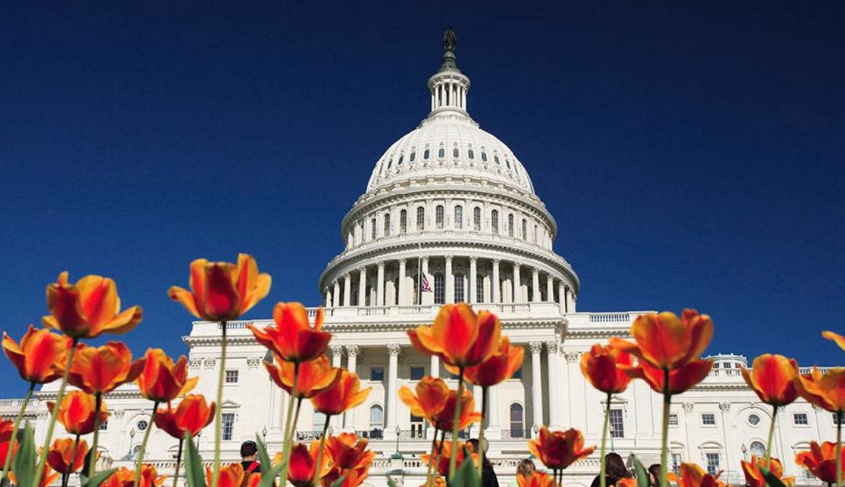 First Acupuncture Congressional Briefing Held on Capitol Hill